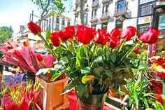 www.languagebookings.com  offers to you the opportunity to learn Spanish in the best schools in Barcelona, at the best price