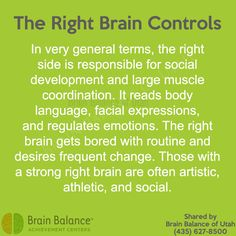 The Right Controls: In very general terms, the right side is for and large It reads body and regulates The gets with and frequent change. Those with a strong right brain are often and Highly Sensitive Person, Right Brain, Outside World, Gods Promises, Brain Health, Facial Expressions, Muscle Fitness, Body Language, Build Muscle