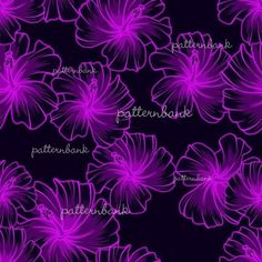 Purple Hibiscus, Neon Purple, Black Backgrounds, Repeat, Royalty, Vibrant, Neon Signs, Pattern, Free
