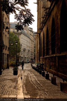 Paved street / Streets of Paris
