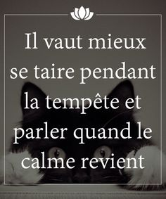 It is better to remain silent during the storm and speak when the calm returns. French Words, French Quotes, French Language Lessons, Proverbs Quotes, Quote Citation, Some Quotes, Positive Attitude, Positive Affirmations, Cool Words