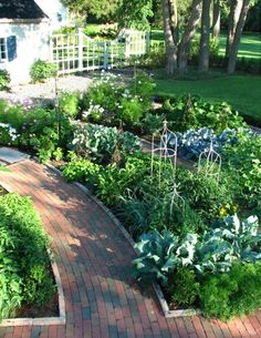 A traditional garden in the French style that contains fruits, berries, herbs. i like how these pathways and garden beds. Garden layout of rows. Culture D'herbes, Verge, Potager Garden, Garden Paths, Border Garden, Gravel Garden, Vegetable Garden Design, Vegetable Gardening, Kitchen Gardening
