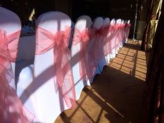 Coral organza sashes with white spandex covers by Made Marvellous