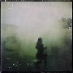 Antonio Palmerini, the month of flowering's finished