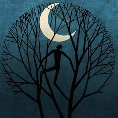 Mi Universar: La luna el árbol y el hombre