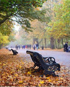 Regents Park, London.-