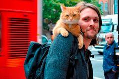 La hermosa historia de Bob el gato callejero