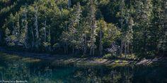 Patagonia Argentina - foto de Francisco Bedeschi