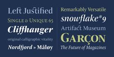 ITC New Veljovic Pro is an humanist typeface created by Jovica Veljovic and published by ITC that is the newest version of the old ITC Veljovic font (1984)