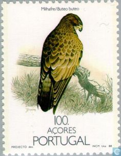 Stamp: Common Buzzard (Buteo buteo) (Azores) (Birds of the Azores) Mi:PT-AZ 1862 Common Buzzard, Postage Stamp Design, Postage Stamp Collection, World Birds, Nature Journal, Bird Cards, Vintage Stamps, Stamp Collecting, Mail Art