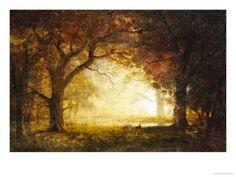 オールポスターズのアルバート・ビアスタット「Forest Sunrise」高画質プリント