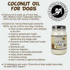 the benefits of coconut oil for your dog! Its great for humans did you know it was good for dogs too?!