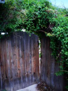 Garden Gate www.utahhomesguy.com/9707dunsinanedr