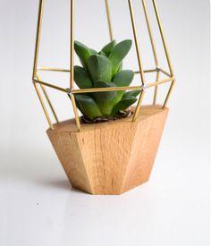 Elegant Wooden Planter - Geometric Wood Brass Gem - for Succulent, Cactus and Air plants. Handmade in EU