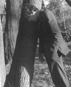 Leonard Cohen recargado en un árbol :3