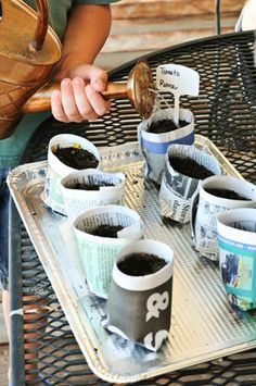Make little seedling pods from newspaper that the kids can help make, plant and tend via babble.com