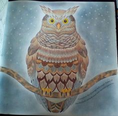 40 Best Coloring Projects And Ideas Images On Pinterest