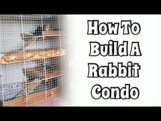 DIY Rabbit Housing Archives - Page 3 of 3 - BudgetBunny Diy Bunny Cage, Bunny Cages, Rabbit Cages, House Rabbit, Pet Rabbit, Rabbit Information, Bunny Hutch, Indoor Rabbit, Bunny Toys