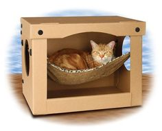 SnoozePal Cat Hammock in a box is the best cat bed for those finicky cats that love boxes