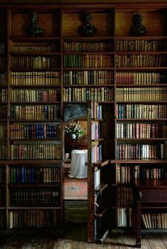 Secret door book-shelf