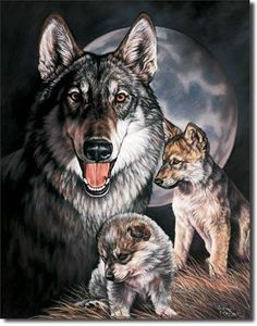 Wolf Experience Sign is a brand new vintage tin sign made to look vintage, old, antique, retro. Purchase your vintage tin sign from the Vintage Sign Shack and save. Wolf Photos, Wolf Pictures, Wolf Tattoos, Celtic Tattoos, Animal Tattoos, Wolf Spirit, Spirit Animal, Metal Animal, Cubs Pictures