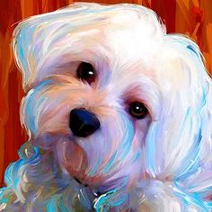 painting white w color Chica, Bailey, Gracie | Art Dog Blog