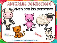 Tipos de animales claseficación (4) Teaching Activities, Teaching Science, Classroom Activities, Teaching Kids, Kids Learning, Animal Classification, Halloween 1, Language Lessons, Pugs