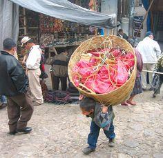 Child Labor in Guatemala