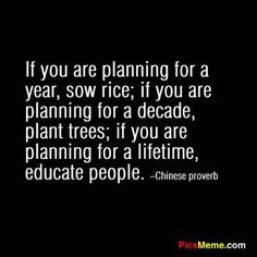 If you are planning for a year, sow rice; if you are planning for a decade, plant trees; if you are planning for a lifetime, educate people. - Chinese proverb