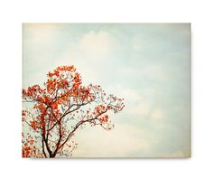 Autumn Tree Photography orange red landscape by semisweetstudios, $70.00