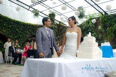 Los novios cortan el pastel. The grooms & the cake