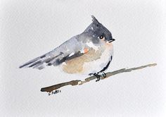 ORIGINAL Watercolor Painting Postcard, Chickadee Illustration 4x6 inch, Small Afordable Art