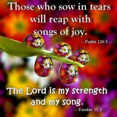 """† ♥ ✞ ♥ †  """" What you sow in tears , when it is done for Jesus with love and willingness . . .You will reap it with songs of joy . . . in due time ! Keep Doing What Pleases Jesus .""""  † ♥ ✞ ♥ † Let us not become tired of doing good. At the right time we will harvest a crop if we don't give up. {Galatians 6:9} † ♥ ✞ ♥ †"""