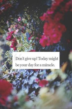 Don't give up! <3