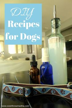 6 easy DIY recipes for dogs-- flea collar, shampoo, itchy spot, old age support, deodorizer and more! #dog #homeremedy