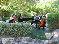 Hire a string quartet for entertainment before and during dinner.