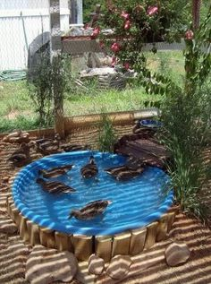 If you have ducks check out this easy clean duck pond idea. He took a kiddie pool and made a hole for drainage that he seals with a cork. Built some timber pieces to hold it up and then when it needs cleaned he just pulls the plug and it drains into a makeshift septic …