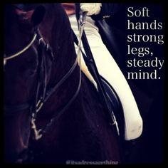 Soft hands strong legs, steady mind.