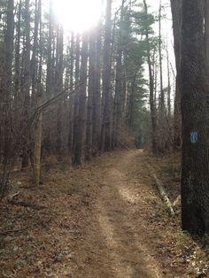 Gunpowder Falls State Park, Maryland. Fall 2013.