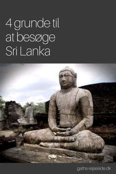 4 grunde til at besøge Sri Lanka. Læs her, hvorfor din næste rejse skal gå til Sri Lanka.