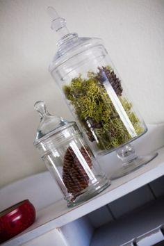 Amazing DIY Non-Living Terrarium   Shelterness