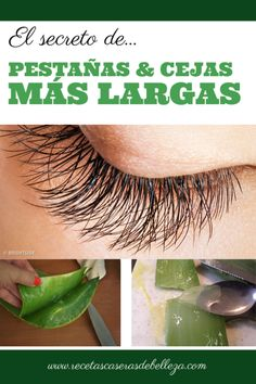 The secret to longer lashes and thicker brows? A DIY concoction that consists of all natural ingredients such as aloe vera and castor oil - MADE for hair growth! Beauty Care, Diy Beauty, Beauty Skin, Beauty Hacks, Health And Beauty, Homemade Beauty, How To Grow Eyelashes, Thicker Eyelashes, Long Lashes