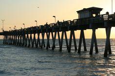Venice, FL : Sharky's Pier-Bl/White photos for wall idea