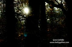 Free Halloween stories for kids. From Ballyyahoo, Ireland's secret and magical town on the Wild Atlantic Way. Click now for your free story. Halloween Stories For Kids, Free Stories, Cool Kids, The Darkest, Ireland, Witch, Magic, Children, Nature