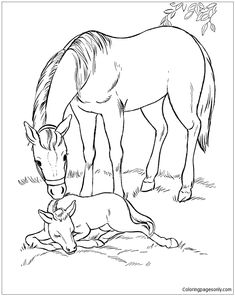 Fresh Horse Coloring Page