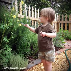 Gardening with Kids - Teaching Observation Skills...great idea for teaching little ones about nature.