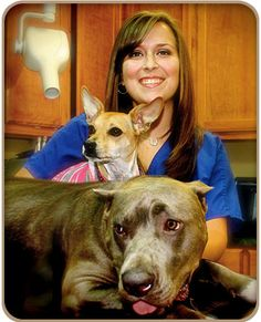 Melissa, Client Relations Dogs, Animals, Animales, Animaux, Animal Memes, Animal, Pet Dogs, Dog, Animais