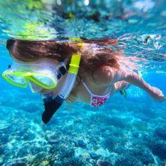 Snorkeling at Sosua Bay - Dominican Republic Bali Cruise, Sosua, Serengeti National Park, Dominican Republic, Natural Wonders, Water Sports, Snorkeling, National Parks, Tours