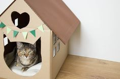 Scandinavian style cardboard House with cut patterned cat and heart that can serve as housing for animals or toy for children.  Colours (flags