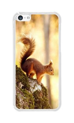 Cunghe Art iPhone 5C Case Custom Designed Transparent PC Hard Phone Cover Case For iPhone 5C With Squirrel Phone Case https://www.amazon.com/Cunghe-Art-Designed-Transparent-Squirrel/dp/B016UGWXQ6/ref=sr_1_9292?s=wireless&srs=13614167011&ie=UTF8&qid=1469243540&sr=1-9292&keywords=iphone+5c https://www.amazon.com/s/ref=sr_pg_388?srs=13614167011&rh=n%3A2335752011%2Cn%3A%212335753011%2Cn%3A2407760011%2Ck%3Aiphone+5c&page=388&keywords=iphone+5c&ie=UTF8&qid=1469243047&lo=none